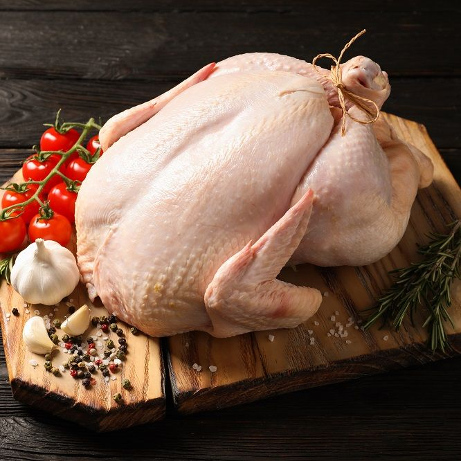 Wholesale Chicken Distributors